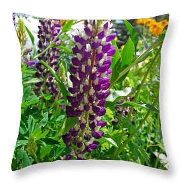 Grand Lake Purple Throw Pillow