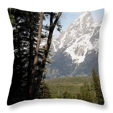 Throw Pillow featuring the photograph Grand Tetons Vertical by Living Color Photography Lorraine Lynch