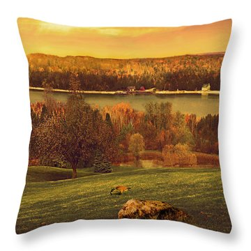 Grand View Throw Pillow by Doug Kreuger
