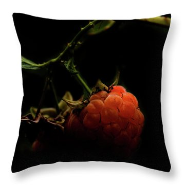 Grandmas Berries Throw Pillow by Jerry Cordeiro