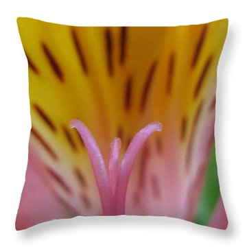 Grandstanding Photography Throw Pillow by Tina Marie