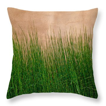 Throw Pillow featuring the photograph Grass And Stucco by David Pantuso