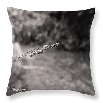 Grass Over Dirt Road Throw Pillow