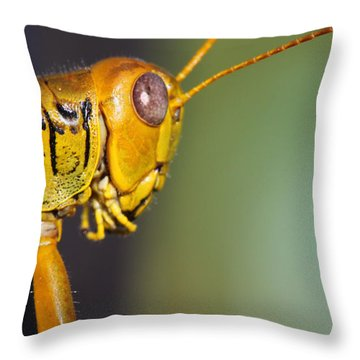 Grasshopper 2 Throw Pillow