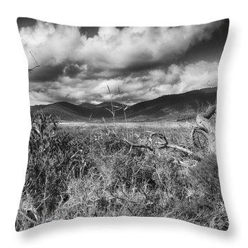 Grassland V3 Throw Pillow