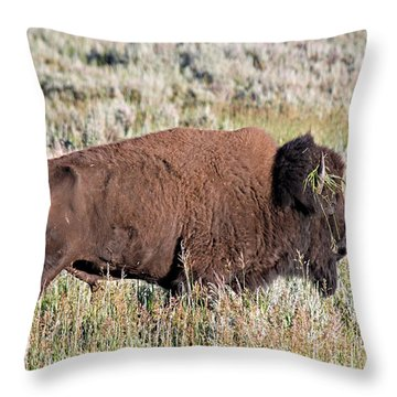 Grassy Horn Throw Pillow
