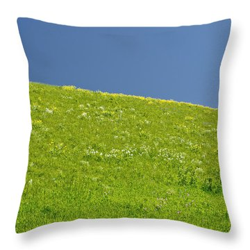 Grassy Slope View Throw Pillow by Roderick Bley