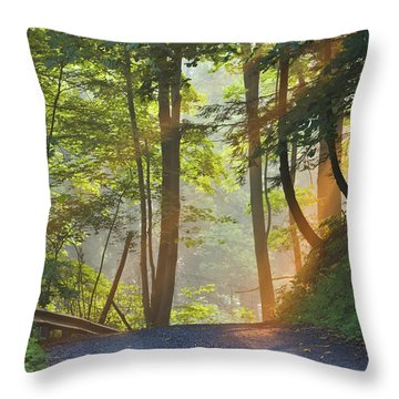 Gravel Road At Sunrise, Pelham, Ontario Throw Pillow by Darwin Wiggett