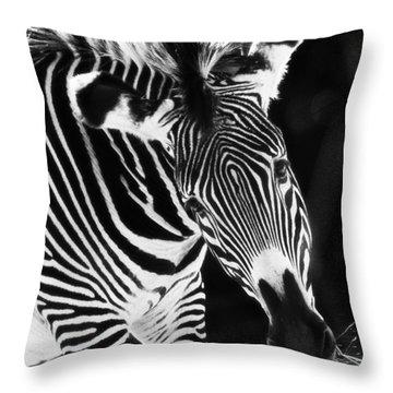 Gravy Zebra Throw Pillow