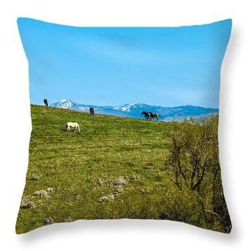 Grazing Horses Throw Pillow by Robert Bales