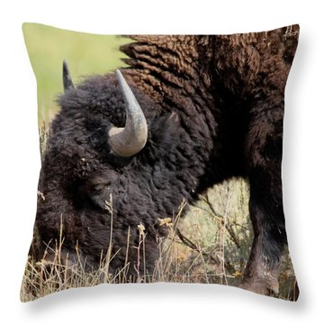 Grazing The Yellowstone Valley Throw Pillow by David Dunham