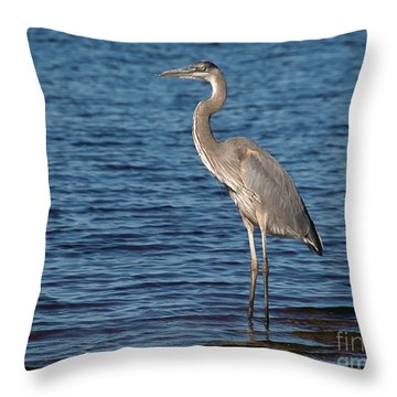 Throw Pillow featuring the photograph Great Blue Heron by Art Whitton