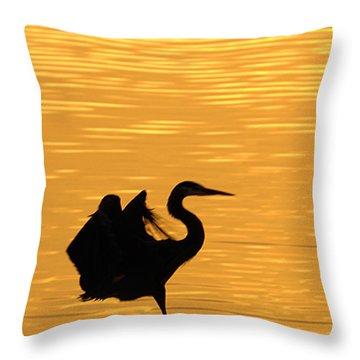 Throw Pillow featuring the photograph Great Blue Heron Landing In Golden Light by Randall Branham