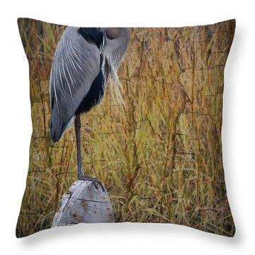 Great Blue Heron On Spool Throw Pillow by Debra and Dave Vanderlaan