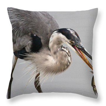 Great Blue Heron Throw Pillow by Paul Marto