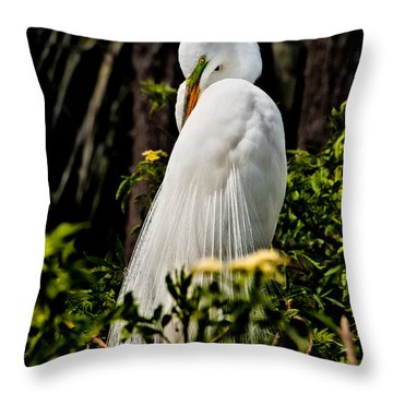 Great Egret Throw Pillow by Christopher Holmes