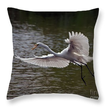 Throw Pillow featuring the photograph Great Egret In Flight by Art Whitton