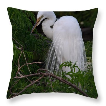 Throw Pillow featuring the photograph Great Egret Nesting by Art Whitton