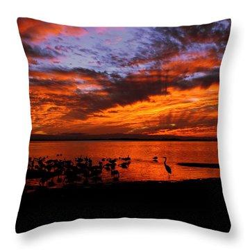 Great Heron Sunset Throw Pillow