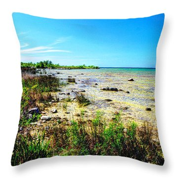 Throw Pillow featuring the photograph Great Lakes Summer Shoreline by Janice Adomeit