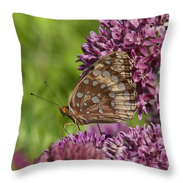 Great Spangled Fritillary Din194 Throw Pillow