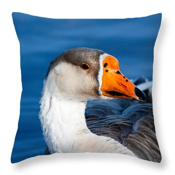 Greater White Frontal-goose Striking A Pose Throw Pillow by Ann Murphy
