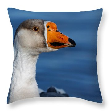 Greater-white Fronted Goose Throw Pillow by Ann Murphy