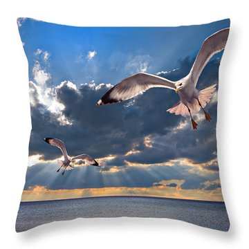 Greek Gulls With Sunbeams Throw Pillow