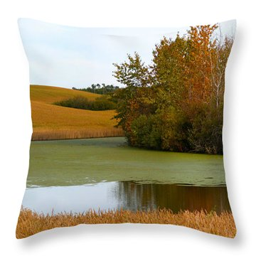 Green And Gold Throw Pillow by Stuart Turnbull