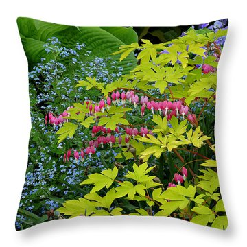 Throw Pillow featuring the photograph Green Bay Botanical Gardens by Judy  Johnson