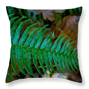 Throw Pillow featuring the photograph Green Fern by Tikvah's Hope