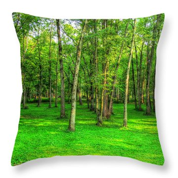 Green Floored Forest Throw Pillow by Jackie Novak
