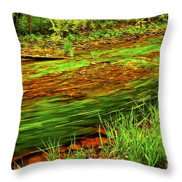 Green Forest River Throw Pillow by Elena Elisseeva