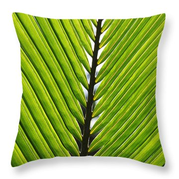 Green Fronds Throw Pillow by Lauri Novak