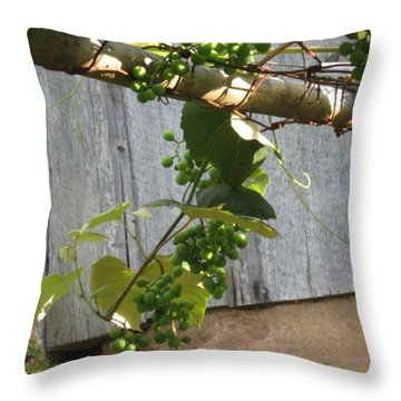 Green Grapes On Rusted Arbor Throw Pillow