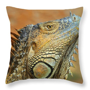 Green Iguana Throw Pillow by Tony Beck