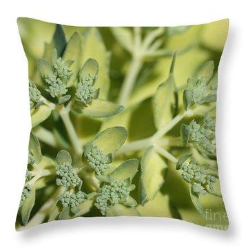Green On Green Throw Pillow by James E Weaver