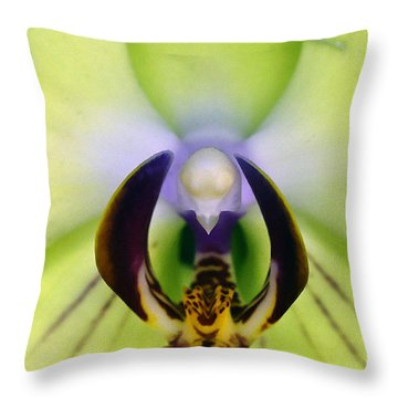 Throw Pillow featuring the photograph Green Orchid Macro by Clayton Bruster