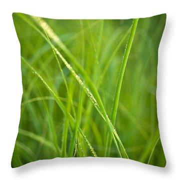 Green Prairie Grass Throw Pillow by Steve Gadomski