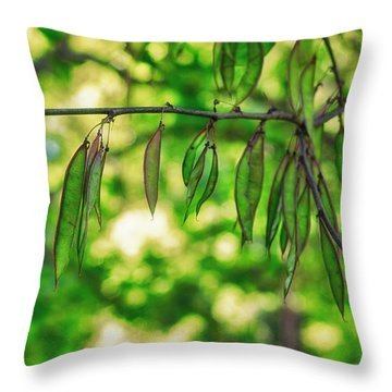 Green Redbud Seed Pods Throw Pillow