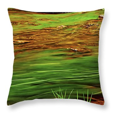 Green River Throw Pillow by Elena Elisseeva