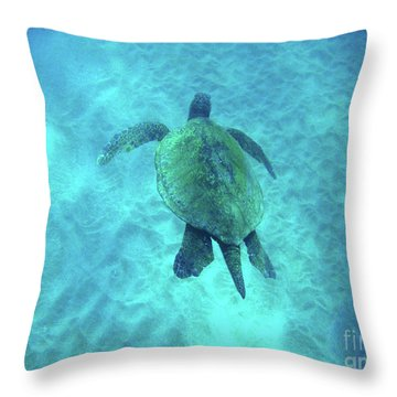 Green Sea Turtle 2 Throw Pillow by Bob Christopher