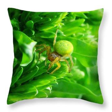 Green Spider 2.0 Throw Pillow by Yhun Suarez