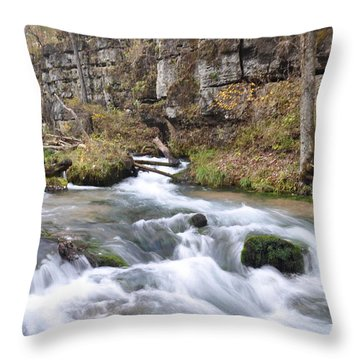 Greer Spring Fall 1 Throw Pillow by Marty Koch