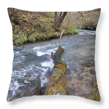 Greer Spring Fall 2 Throw Pillow by Marty Koch