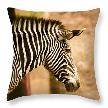 Grevys Zebra Throw Pillow