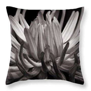 Grey Dahlia Throw Pillow