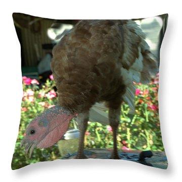Grill Turkey Anyone Redneck Style Throw Pillow