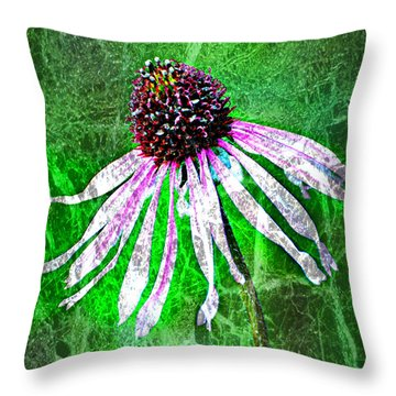Gritty Coneflower Throw Pillow by Marty Koch