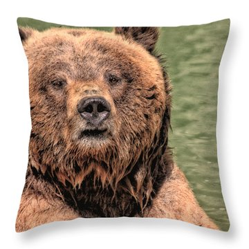 Grizz With Stick Throw Pillow by Karol Livote